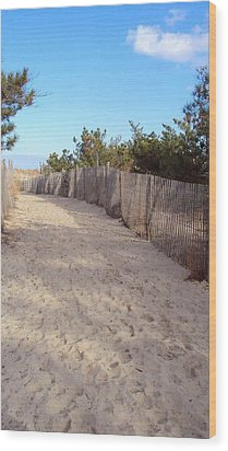 Cape Henlopen 5 Wood Print by Cynthia Harvey
