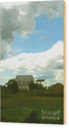 Cape House Wood Print by Paul Tagliamonte