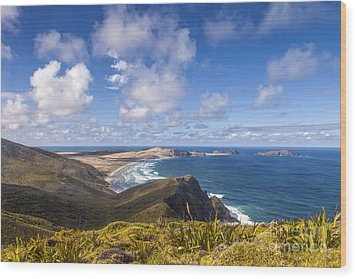 Cape Maria Van Diemen Northland New Zealand Wood Print by Colin and Linda McKie