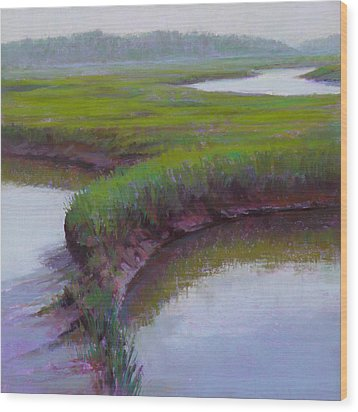 Cape Morning Wood Print by Ed Chesnovitch