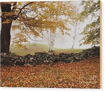 Caper Hill Birch Wood Print by Butch Lombardi