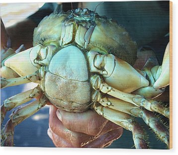 Wood Print featuring the painting Capers Crab by Lyn Calahorrano
