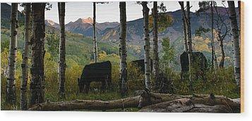 Capital Peak Wood Print by David Yack