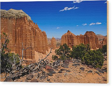 Capital Reef Wood Print by Donald Fink