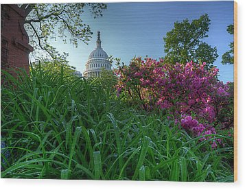 Wood Print featuring the photograph Capitol Dome by Michael Donahue