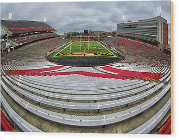 Capitol One Field Wood Print by Mitch Cat