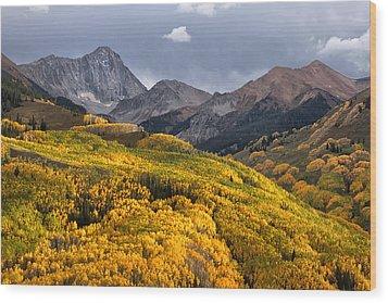Capitol Peak In Snowmass Colorado Wood Print