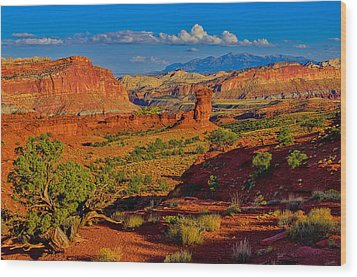 Wood Print featuring the photograph Capitol Reef Landscape by Greg Norrell