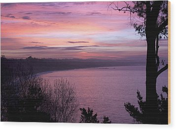 Wood Print featuring the photograph Capitola Bluffs by Lora Lee Chapman