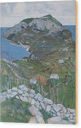 Capri, C.1904 Wood Print by Maurice Greiffenhagen