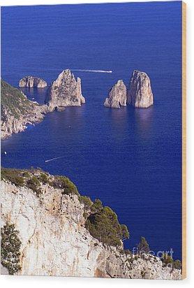 Capri Italy Seascape Wood Print