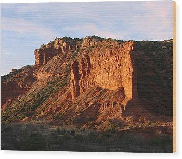 Wood Print featuring the photograph Caprock Canyon by Linda Cox