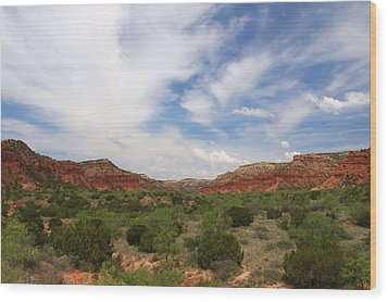 Wood Print featuring the photograph Caprock Canyons State Park 2 by Elizabeth Budd