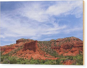 Wood Print featuring the photograph Caprock Canyons State Park by Elizabeth Budd