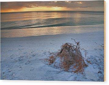 Captiva Sunset Iv Wood Print by Steven Ainsworth