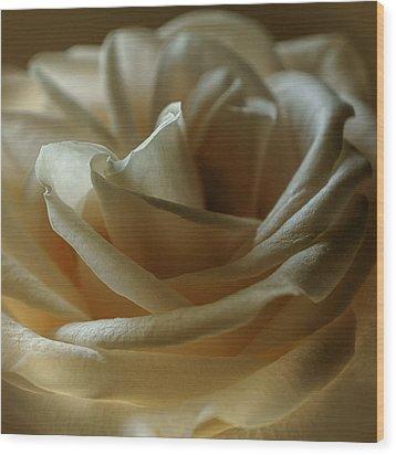 Caramel Mochachino Wood Print by Darlene Kwiatkowski