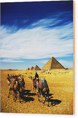 Caravan Of Camels Wood Print by Alison Tomich