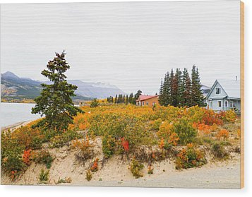Carcross Bungalows Wood Print