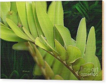 Cardboard Palm Wood Print by E B Schmidt