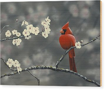 Cardinal And Blossoms Wood Print by Peter Mathios