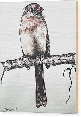 Cardinal Female Wood Print by Katharina Filus
