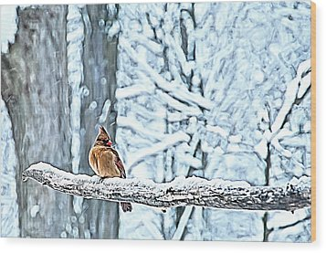 Cardinal No Mate To Keep Warm Wood Print by Randall Branham