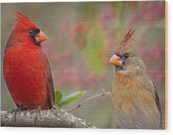 Cardinal Pair Wood Print by Bonnie Barry