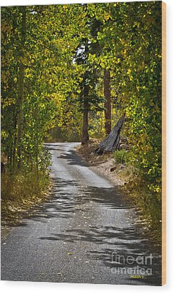 Carefree Highway Wood Print by Mitch Shindelbower