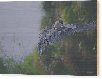 Wood Print featuring the photograph Careful Landing by Dennis Baswell