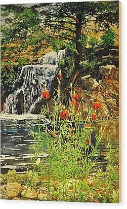 Carey Falls At Star Ranch Wood Print