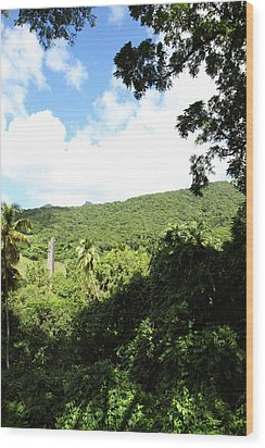 Caribbean Cruise - St Kitts - 1212224 Wood Print by DC Photographer