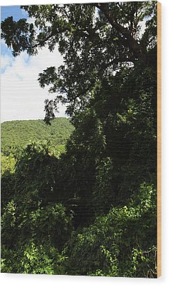 Caribbean Cruise - St Kitts - 1212225 Wood Print by DC Photographer