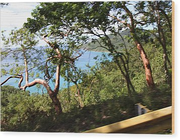 Caribbean Cruise - St Thomas - 1212110 Wood Print by DC Photographer