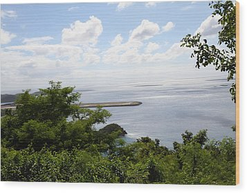 Caribbean Cruise - St Thomas - 1212141 Wood Print by DC Photographer