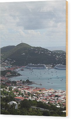 Caribbean Cruise - St Thomas - 1212201 Wood Print by DC Photographer