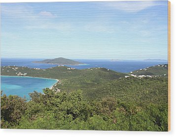 Caribbean Cruise - St Thomas - 1212240 Wood Print by DC Photographer