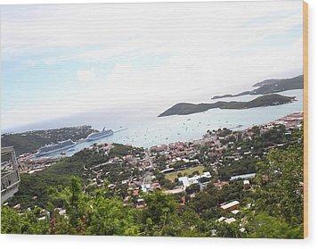 Caribbean Cruise - St Thomas - 1212248 Wood Print by DC Photographer