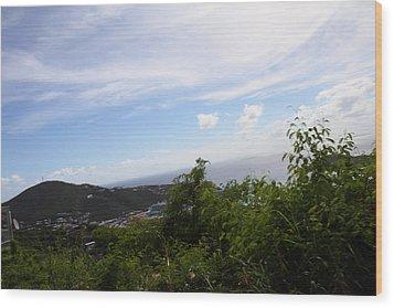 Caribbean Cruise - St Thomas - 1212252 Wood Print by DC Photographer