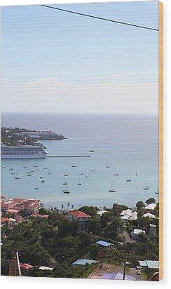 Caribbean Cruise - St Thomas - 1212283 Wood Print by DC Photographer
