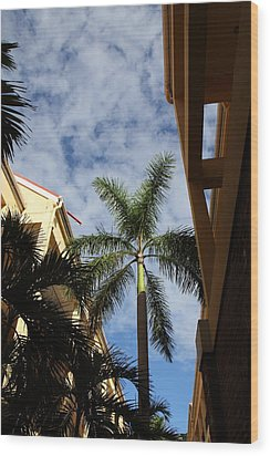 Caribbean Cruise - St Thomas - 121239 Wood Print by DC Photographer