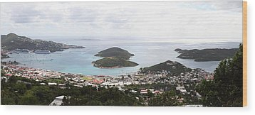 Caribbean Cruise - St Thomas - 12124 Wood Print by DC Photographer