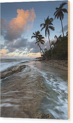Caribbean Flow  Wood Print