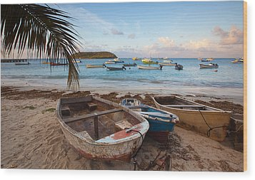 Caribbean Morning Wood Print