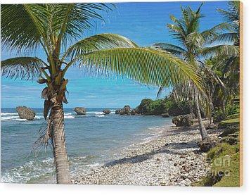 Caribbean Paradise Wood Print by Karen English