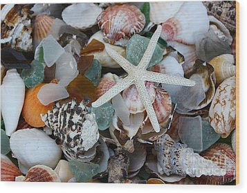 Caribbean Shells Wood Print by The Art of Alice Terrill
