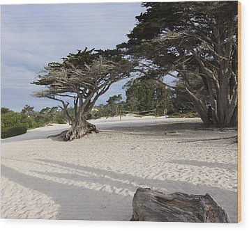 Wood Print featuring the photograph Carmel by Kandy Hurley