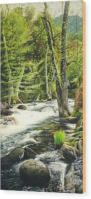 Carmel River Upper Watershed Wood Print by Logan Parsons