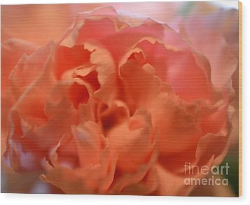 Wood Print featuring the photograph Carnation Burst by Denise Tomasura
