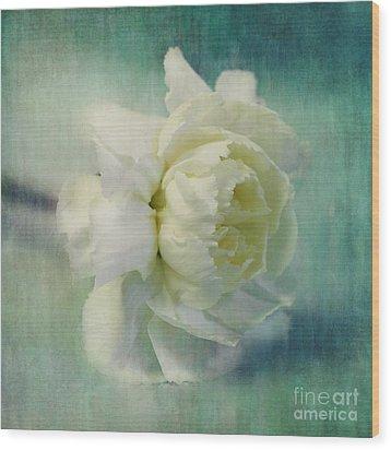 Carnation Wood Print by Priska Wettstein
