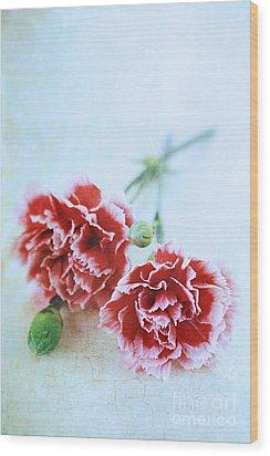 Carnations Wood Print by Stephanie Frey
